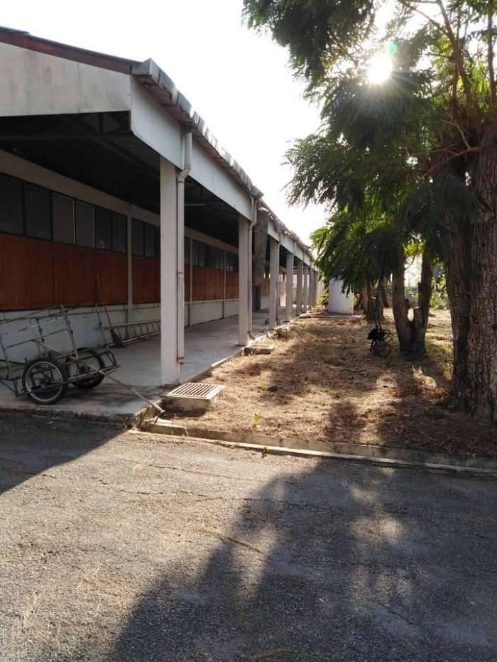 ขายที่ดินพร้อมโรงงาน โกดัง กม.10 พันเนา อ.เมือง จ.นครราชสีมา