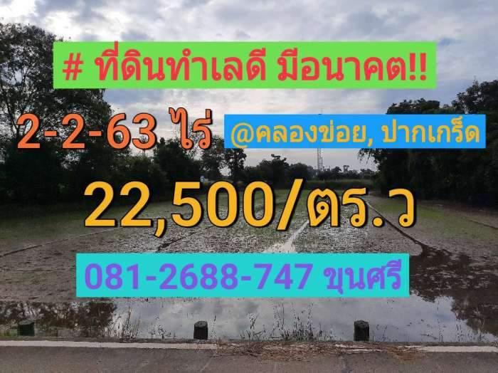 ขายที่ดินคลองข่อย 2-2-63 ไร่ อำเภอ ปากเกร็ด จังหวัด นนทบุรี