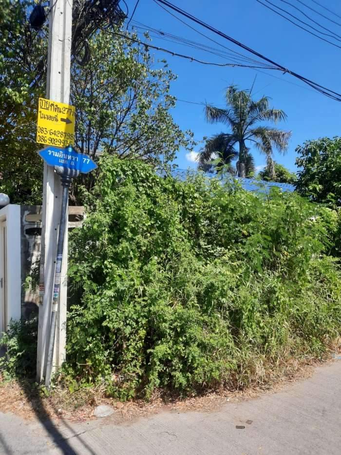 ขาย  ที่ดินเปล่า ซ.รามอินทรา 77 แยก 8 ถนนรามอินทรา ตำบล รามอินทรา อำเภอ คันนายาว กรุงเทพฯ