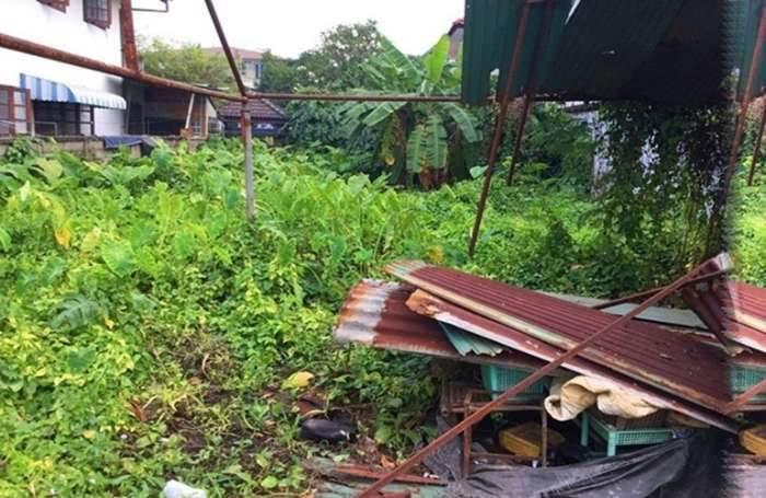 ขายที่ดิน 62 ตารางวา ซ.อ่อนนุช70/1 ใกล้ถนนพัฒนาการ  ตัดใหม่