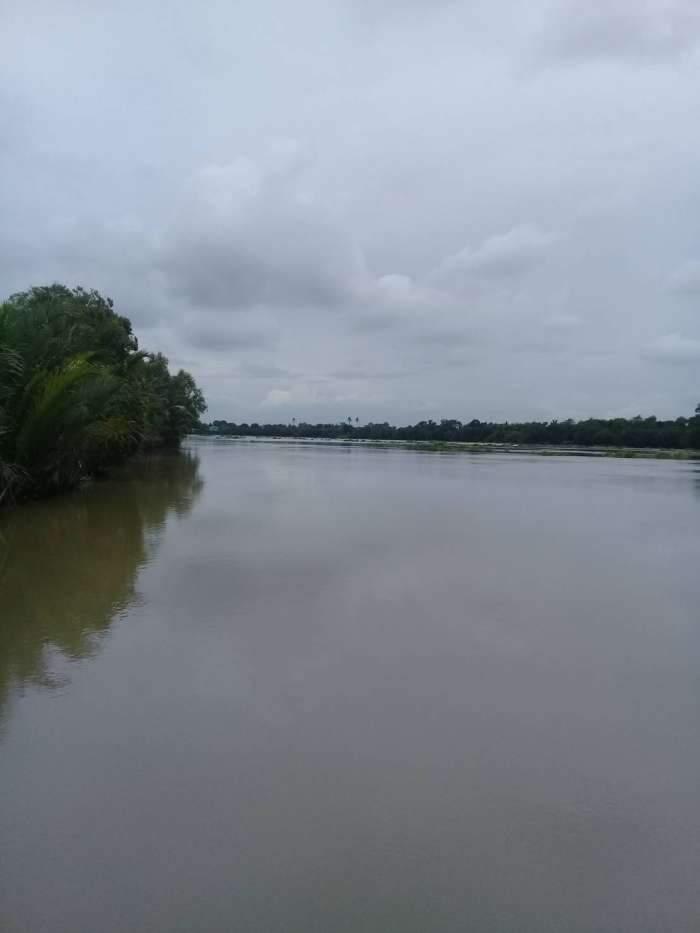 ขายที่ดินติดแม่น้ำบางประกง 1 ไร่ครึ่ง อ.บ้านโพธิ์ จ.ฉะเชิงเทรา