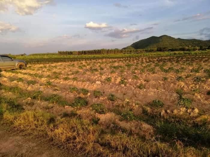 ที่ดินกาญจนบุรีสวยสวยราคาถูก วิวภูเขาล้อมรอบที่ดิน360องศา