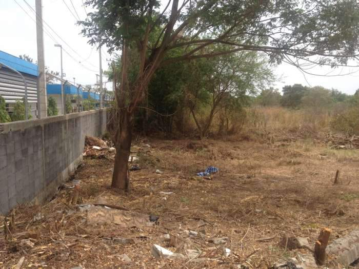 ขายที่ดิน 48 ตรว. นิมิตใหม่ มีนบุรี  เหมาะปลูกบ้าน  ขายถูก