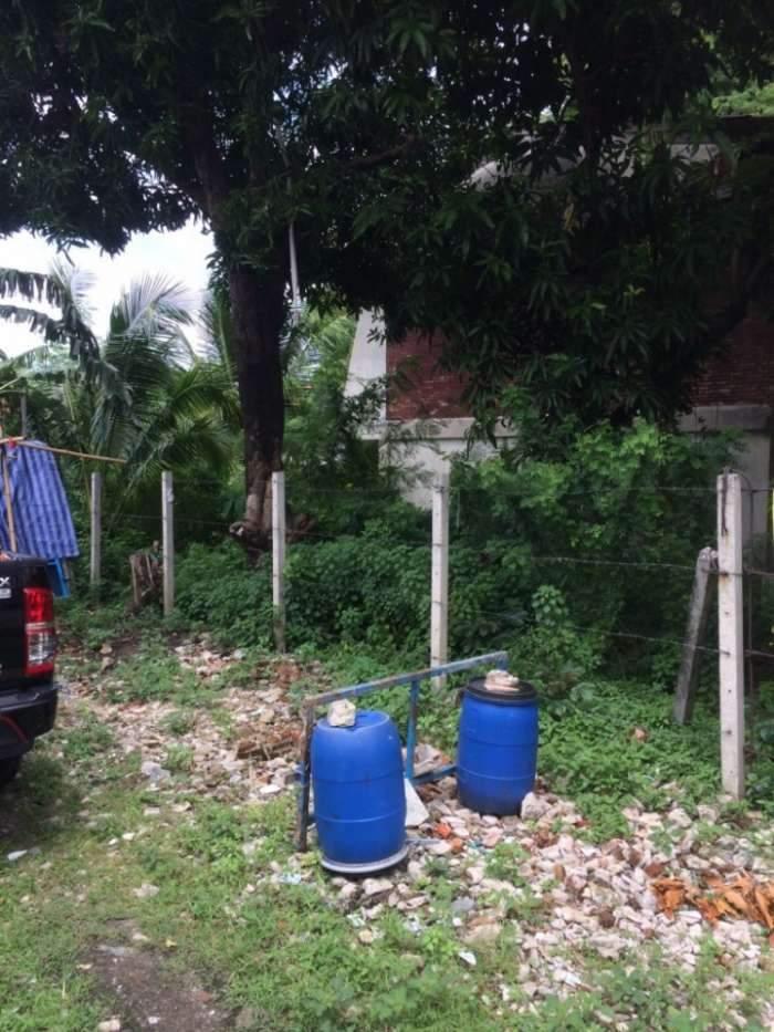 ขายที่ดินและบ้าน 86วา ซอยลาดพพร้าววังหิน30